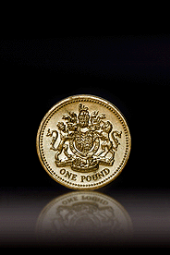 One pound coin on black background_170_255